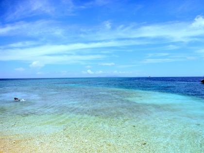 西表島にこにこツアー海